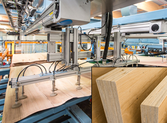 BauBuche beech plywood is now available in spruce